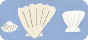 Seashell image for Adult Grab Bag